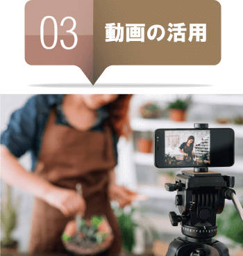 動画の活用